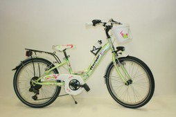 city-bike-bimba.JPG